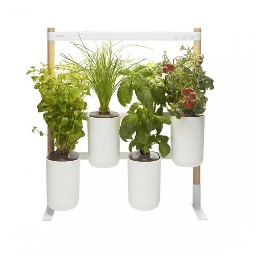Prêt à Pousser Modulo 2 - Indoor Garden